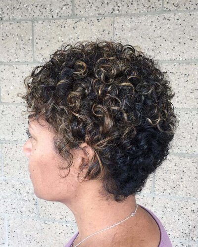 Rounded Curly Pixie Cut with Wispy Highlights